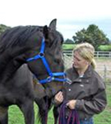 Carrie Ferrier Intelligent Horsemanship Recommended Trainer