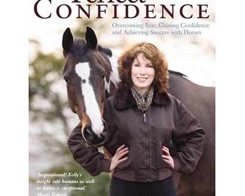 Perfect Confidence book by Kelly Marks