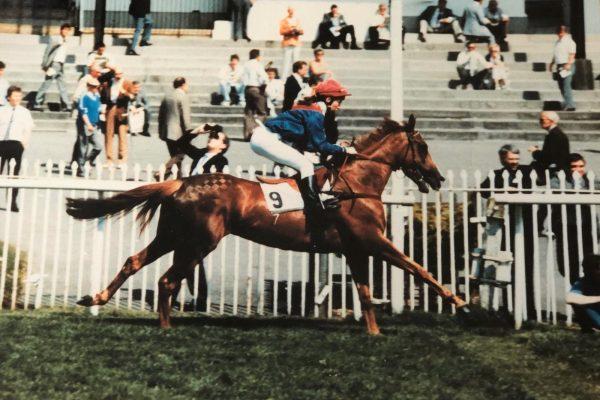 Toscana racehorse ridden by Kelly