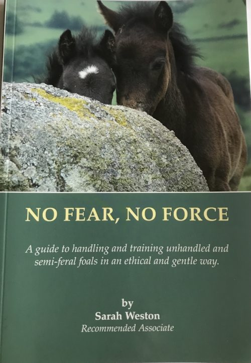 No Fear, No Force book cover